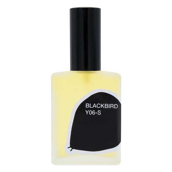 Y06-S-Blackbird