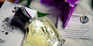 Acqua-Fiorentina-Creed
